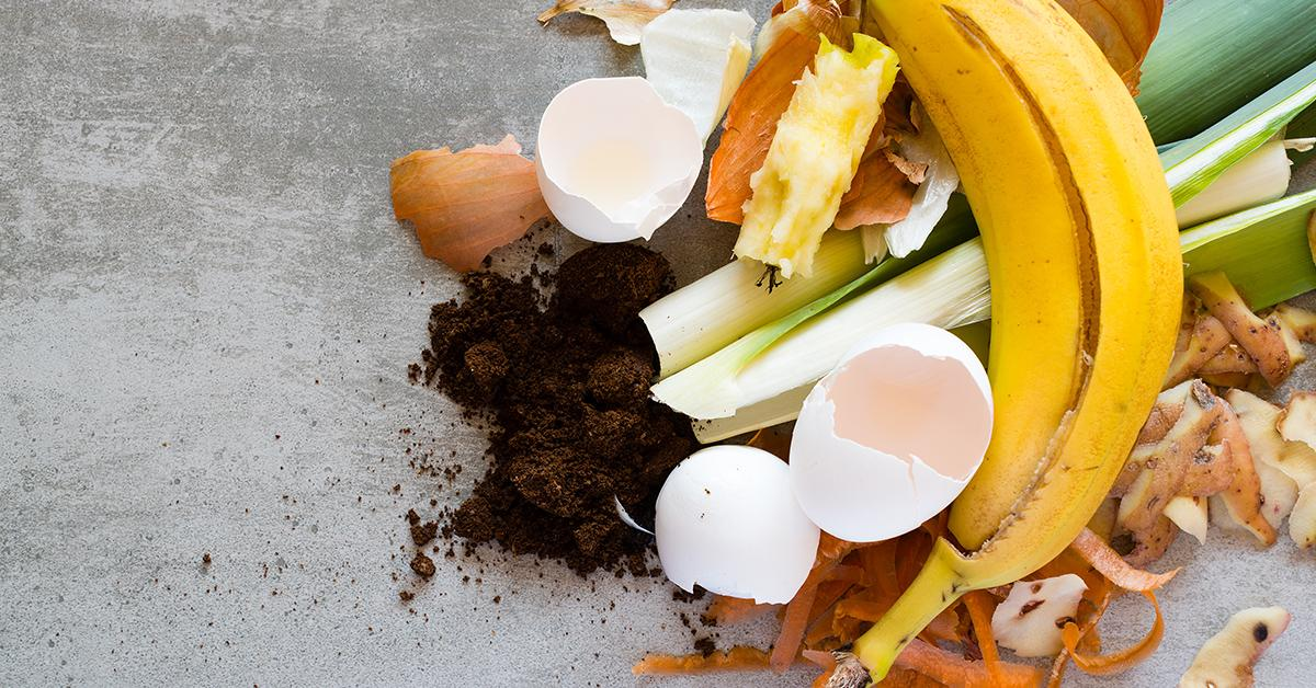 Learn the Ins and Outs of Composting
