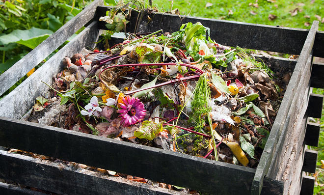 Make Composting a Family Project