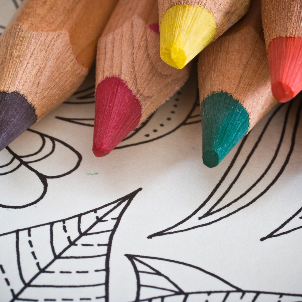 Adult Coloring: New Year's Edition