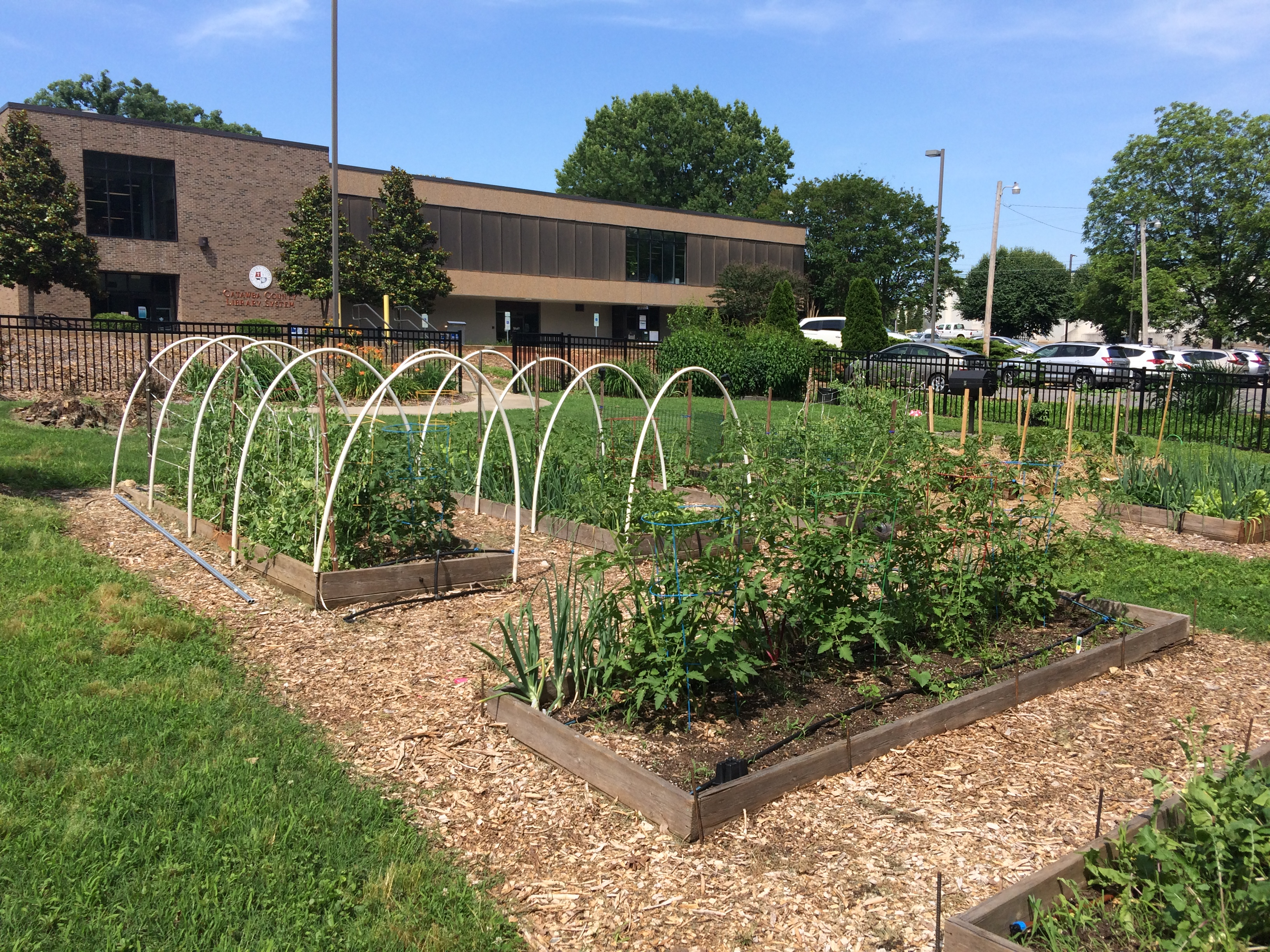 Community Garden Feeds & Engages